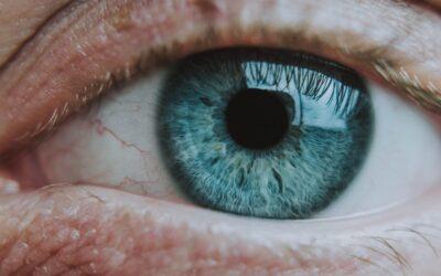 Látásellenőrzés, vizsgálat